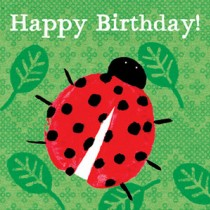Birthday Lady Beetle