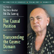 The Causal Position / Transcending the Cosmic Domain