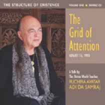 The Grid of Attention