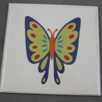 Blue-yellow butterfly