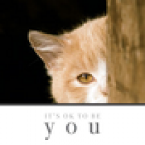 It\'s OK to be YOU