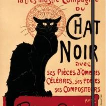 Gatti Noir