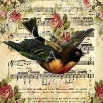 Animalia Series - Bird Song
