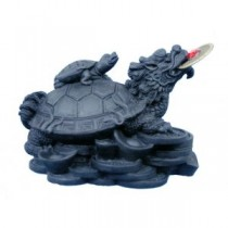 Black Money Turtle