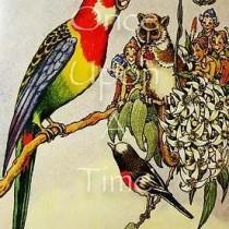 Australiana Series - Red Parrot