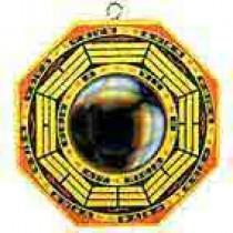 Convex Bagwa Mirror