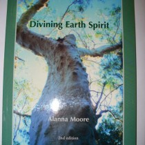 Divining Spirit Earth