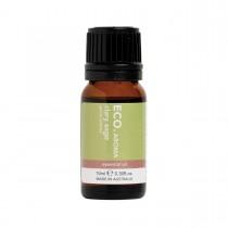 Eco Modern Essentials Aroma Essential Oil Clary Sage