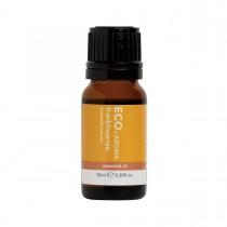Eco Modern Essentials Aroma Essential Oil Frankincense