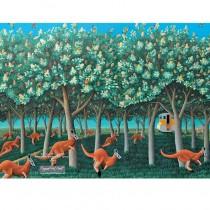 Banksia Boomers (Australian Red Kangaroo)
