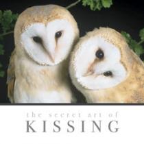 The Secret Art of Kissing